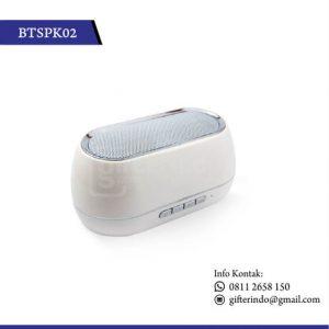 Speaker Custom